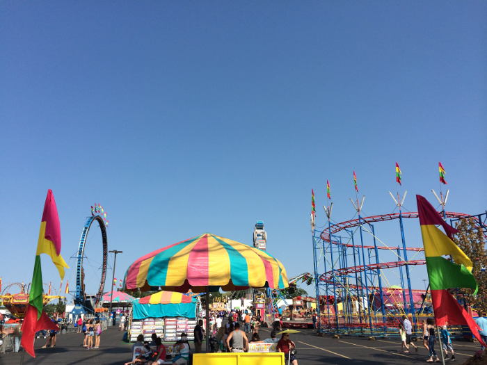 How to do the erie county fair on the cheap step out buffalo for Hamburg ny craft show