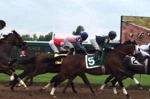 Horse Racing, Fort Erie Race Track