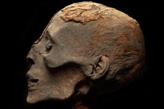 mummies_head