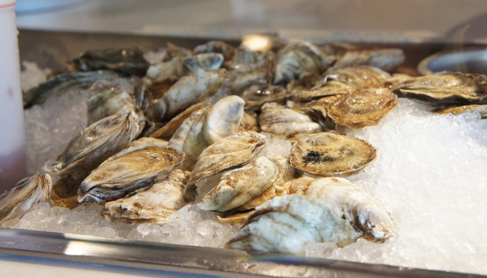 Oshun Oysters