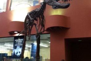 Buffalo Museum of Science - Rethink Extinct