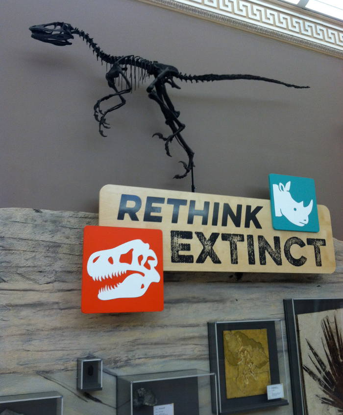 Rethink Extinct Exhibit at Buffalo Museum of Science