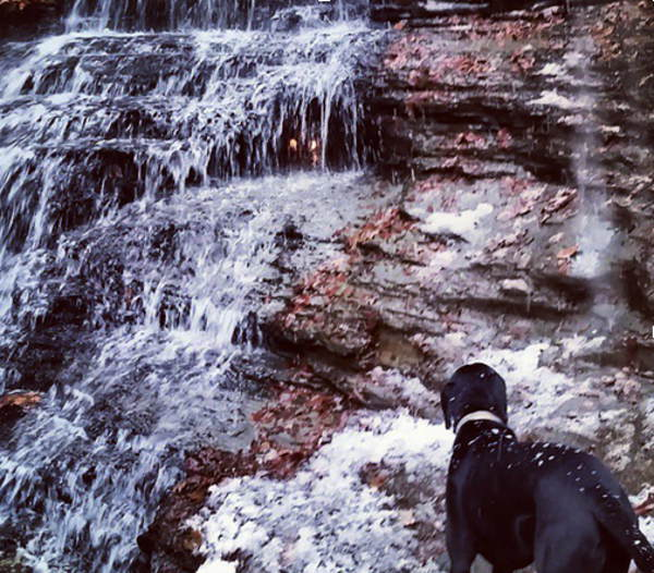 Chestnut Ridge, Eternal Flame, Hiking, Buffalo NY, Orchard Park NY, Step Out Buffalo