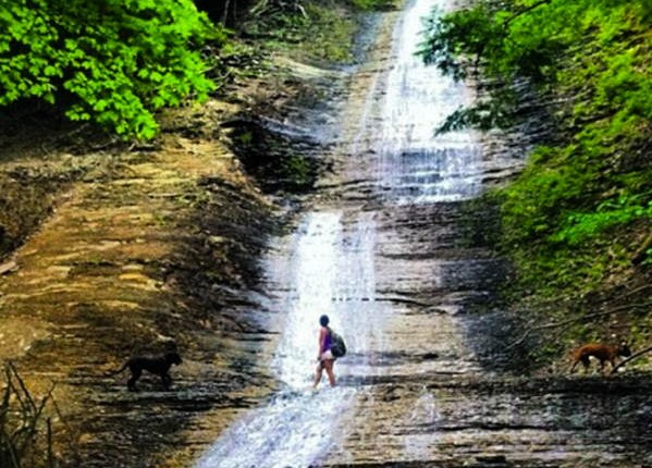 Zoar Valley, Buffalo NY, Hiking, Step Out Buffalo