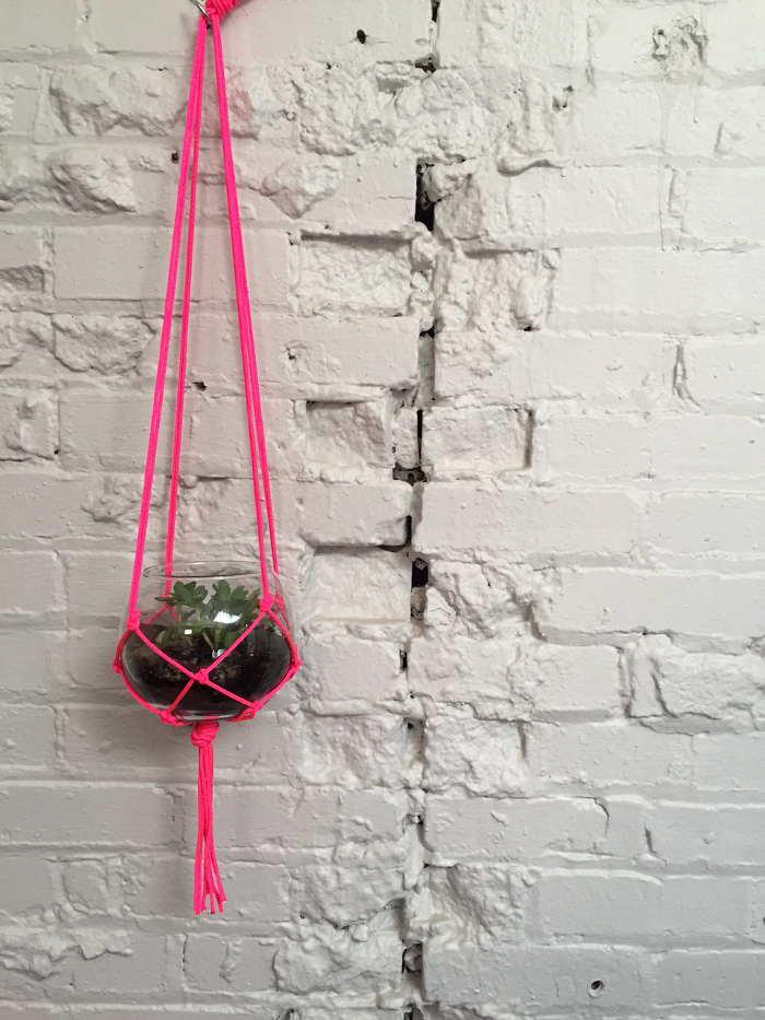 Macrame Hanging Succulent