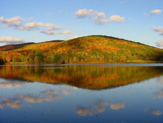 Allegany State Park , Step OUt Buffalo, Fall Drives