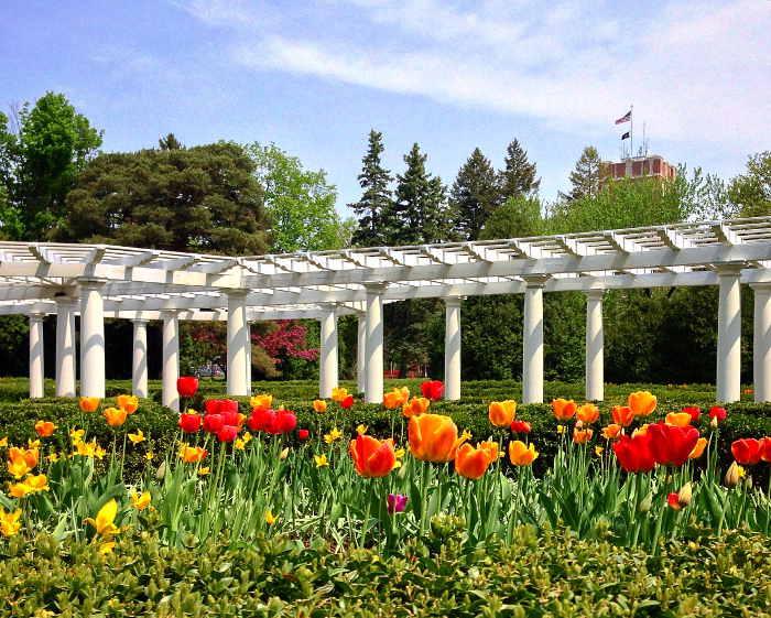 Sonnenberg Gardens, Fall Drives, Step Out Buffalo