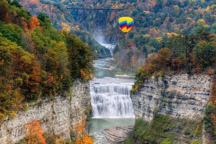 Letchworth State Park, Step Out Buffalo, Fall Drives