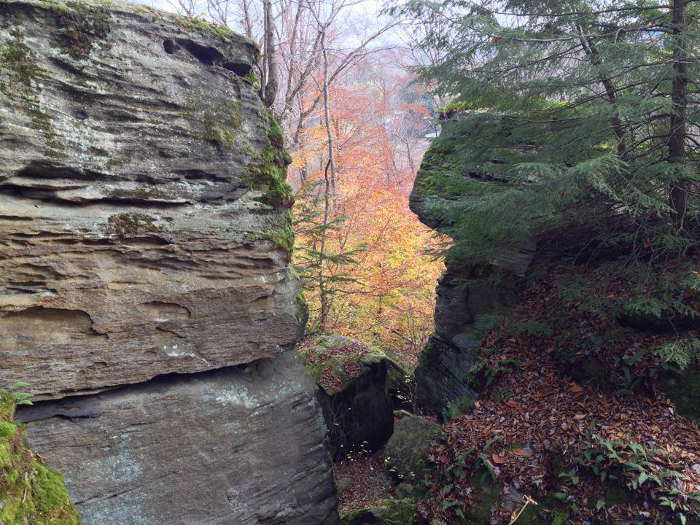 Panama Rocks Scenic Park, Step OUt Buffalo, Fall Drives