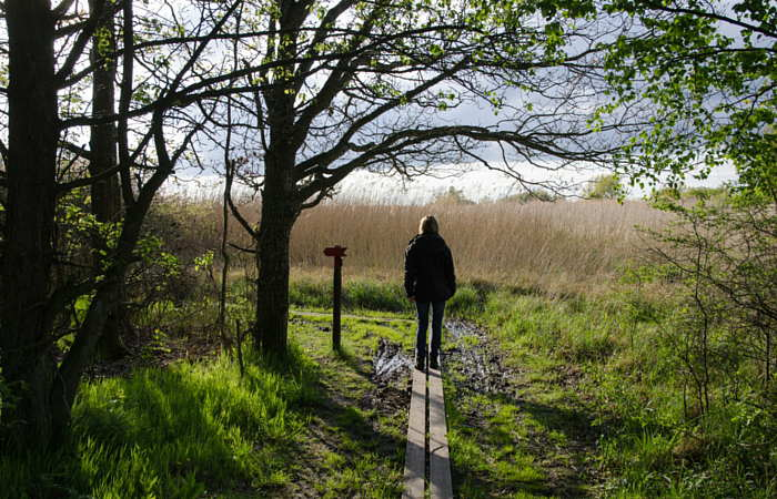 9 of Buffalo's Best Spring Hikes