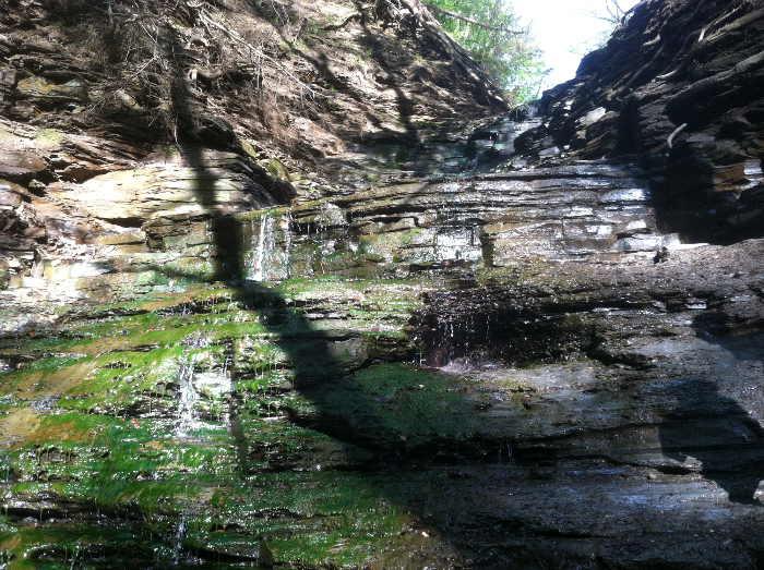 chestnut ridge, eternal flame falls, waterfalls near buffalo ny