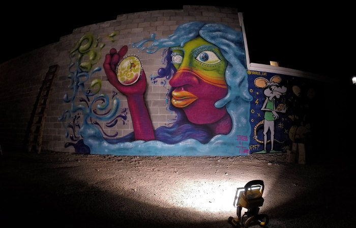 Art Alley Niagara Falls, Buffalo Street Art