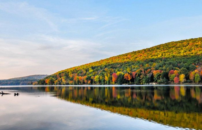 Ultimate Guide to Hiking in Allegheny State Park
