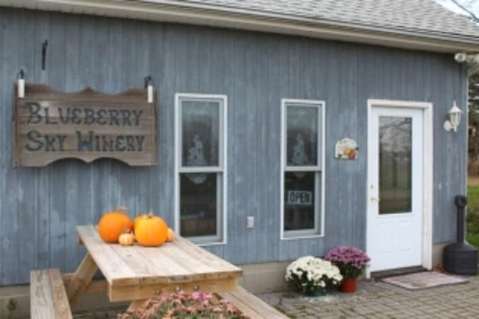 Blueberry Sky Farm Winery
