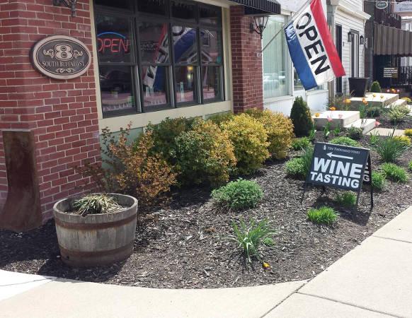 Ten Thousand Vines