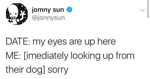 jomny sun, dogs, buffalo ny, step out buffalo