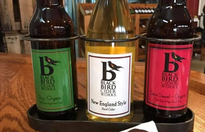 Buffalo Cider News: Local Cidery Wins Gold Medal & Hosts Cider Festival
