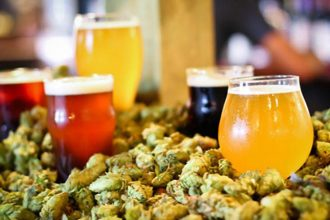 beer n hops