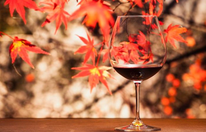 This Event Will Help You Make the Most Out of the Niagara Wine Trail During Harvest Season