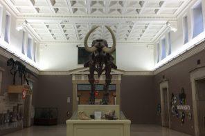 science museum-2