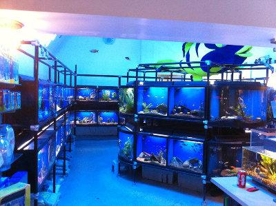 Niagara Aquarium Co.
