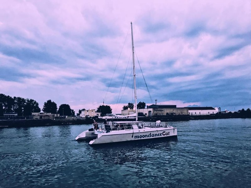 Neil Young Sailboat Cruise Aboard the MoondanceCat