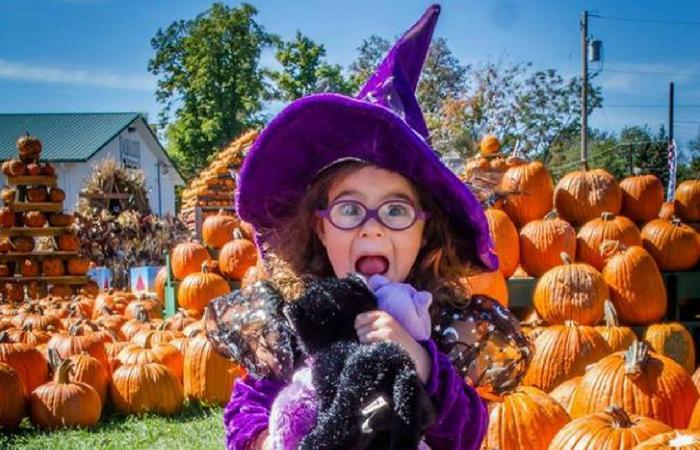 Great Pumpkin Farm Festival |  Weekend 2