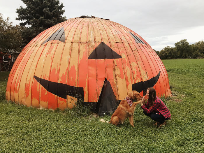 4 Absolutely Perfect Fall Date Ideas for You and Your Pup