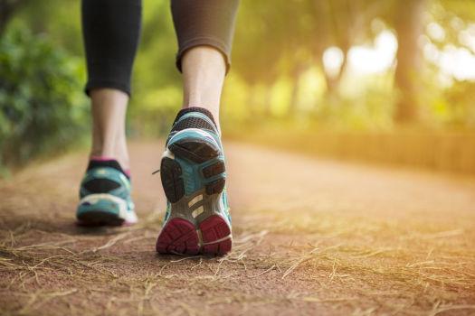 Wellness Walks