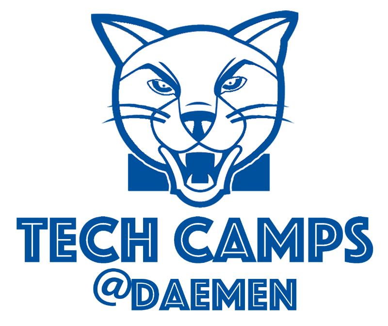 Web Design Summer Camp (Ages 11 & Up) @ Daemen College