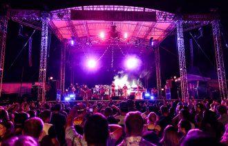 Artpark Concert