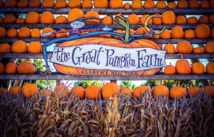 Pumpkin-Farm-Event-Listing-2