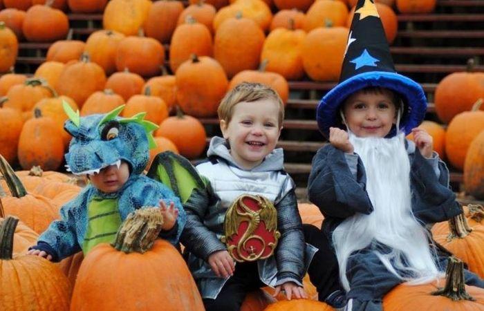 Pumpkin-Farm-Event-Listing-3