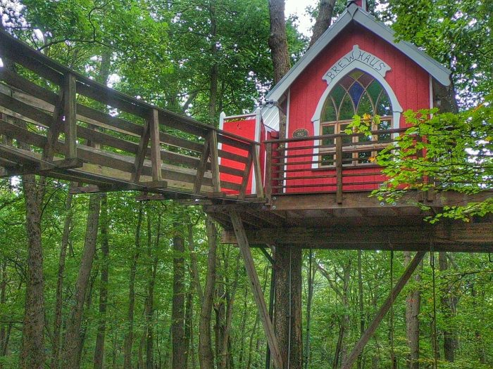 Road Trip: Stay in a Treehouse at The Mohicans Any Time of Year