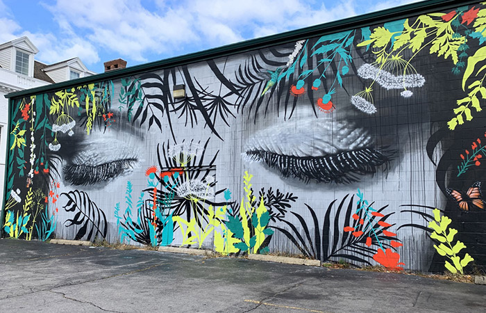 A Complete Guide to Street Art on Elmwood Ave