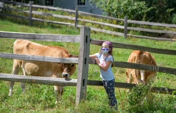 Agricultural Fair at Genesee Country Village & Museum
