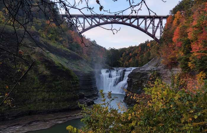 18 of The Most Gorgeous WNY Fall Photos