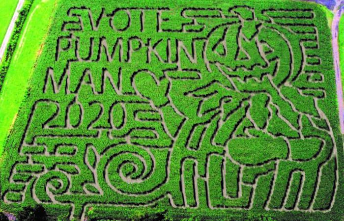 3 Spots To Get Lost In a Corn Maze This Fall in WNY