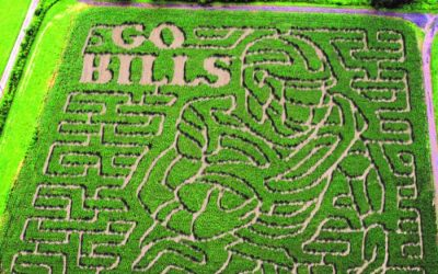 5 Spots To Get Lost In a Corn Maze This Fall in WNY 2021