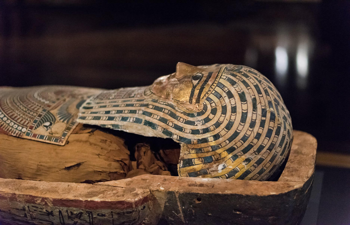 Golden Mummies of Egypt at the Buffalo Museum of Science Now Extended Through 2020!