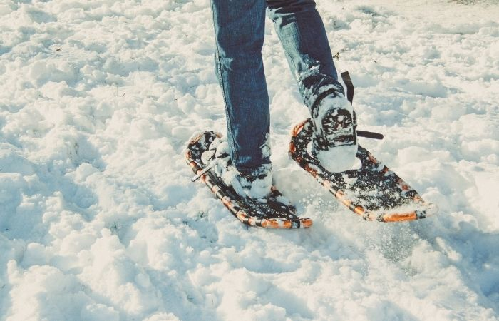 Ultimate Guide to Snowshoeing in WNY