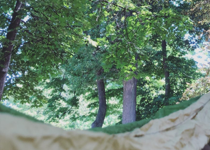 7 Beautiful Parks Perfect for  Hammocking