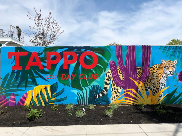 Tappo Day Club / Step Out Buffalo