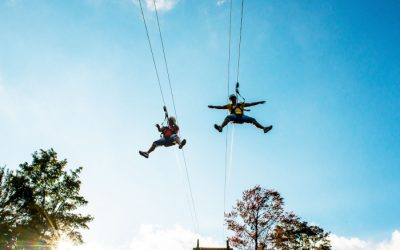 Guide to Adventure Aerial Parks and Zipline Courses In & Near Buffalo