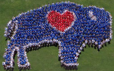 BuffaLove Apparel Invites You to Share Your Love of Buffalo with Those Around You