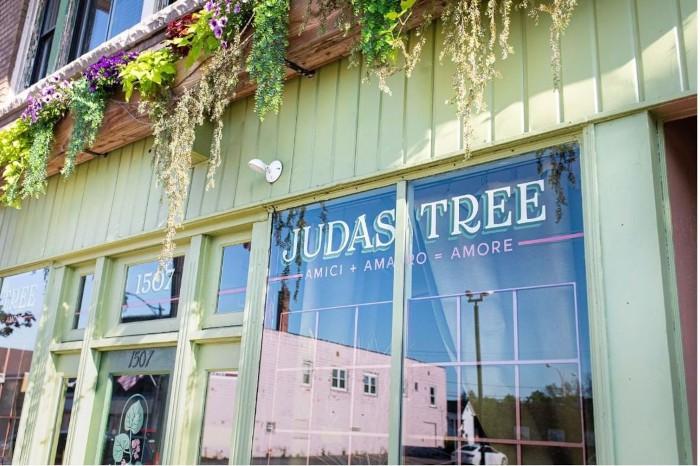 Judas Tree / Photo courtesy of Judas tree