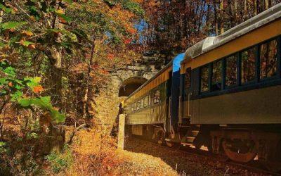 5 Fall Foliage Train Rides to Take in WNY 2021
