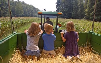 6 Family Friendly Hayrides to Experience This Fall